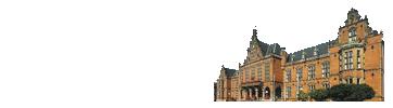 荷兰商学院