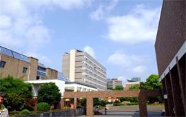 同濟大學风景