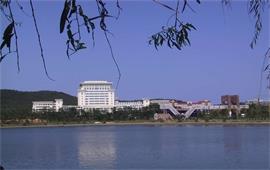 山東大學美景