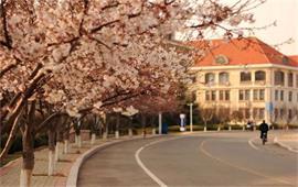 中国海洋大学风光