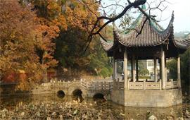 湖南大學美景