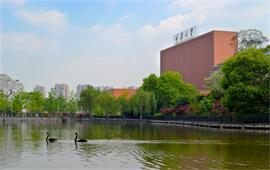 重庆大学风景