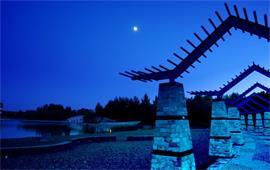 夜晚的东北农业大学