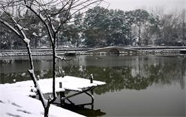 武汉理工大学美景