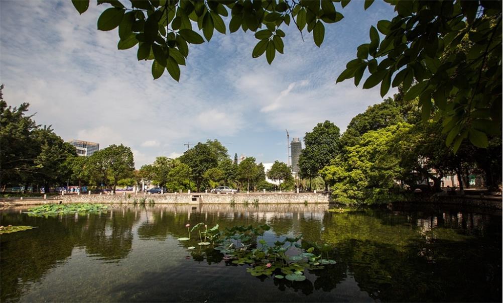 广西大学西校园镜湖