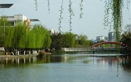 西南交通大学犀浦校区柳堤河畔