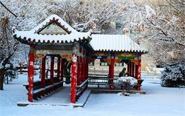 石河子大学雪景