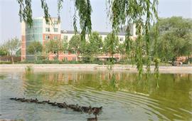 河北大学风景