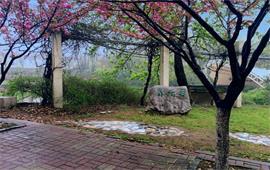 南京工业大学风景