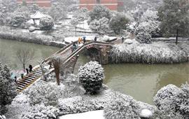 浙江工业大学风景