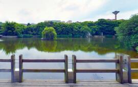 江西财经大学湖边观景台