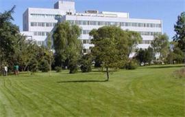 中国科学院心理研究所草坪