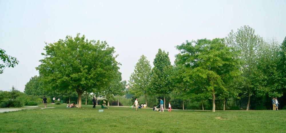 济南大学校园