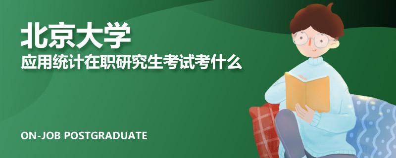 北京大学应用统计在职研究生考试考什么