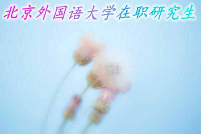 北京外国语大学在职研究生招生详情!