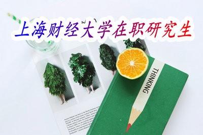 招生汇总,上海财经大学招生专业