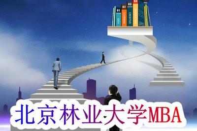 是否有你?北京林業大學MBA招生人群