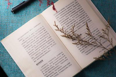北京师范大学在职研究生招生专业一览