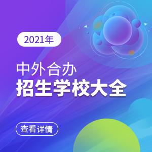 2021年中外合办招生学校