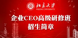 北京大学企业CEO高级研修班