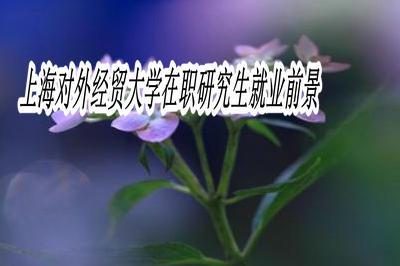 上海对外经贸大学在职研究生就业前景