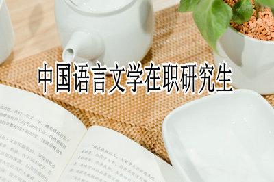 中国语言文学在职研究生